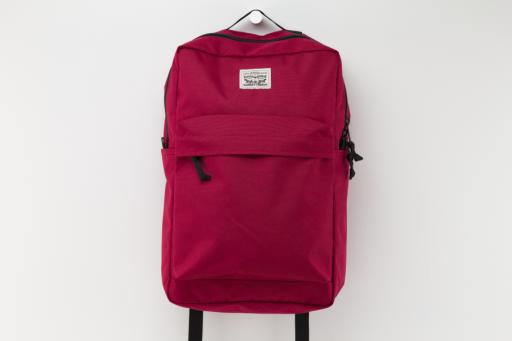 L1 backpack