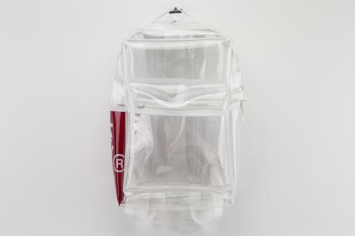 L-series mini clear backpack