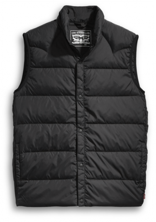 sleevless down vest